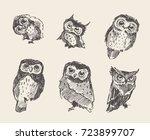 set of vector hand drawn... | Shutterstock .eps vector #723899707