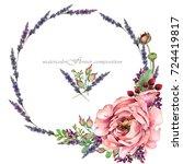 peony flower illustration.... | Shutterstock . vector #724419817