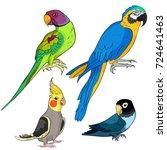 set indian ringed parrot... | Shutterstock .eps vector #724641463