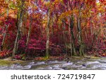 autumn beautiful natural colors ... | Shutterstock . vector #724719847