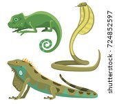 reptile and amphibian colorful... | Shutterstock .eps vector #724852597