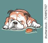 bulldog the dog   Shutterstock .eps vector #724892707