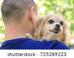 Small photo of Man holding dog. Adoption concept