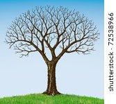 bare tree   Shutterstock .eps vector #72538966