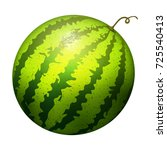 ripe striped watermelon... | Shutterstock .eps vector #725540413