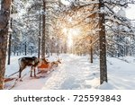 reindeers in a winter forest in ... | Shutterstock . vector #725593843