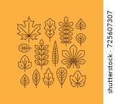 autumn leaves line icons set... | Shutterstock .eps vector #725607307