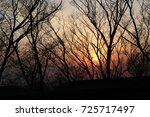 sunset with the nature | Shutterstock . vector #725717497