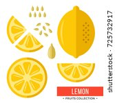 lemon. whole yellow lemon and... | Shutterstock .eps vector #725732917