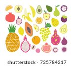 hand drawn tropical and exotic... | Shutterstock .eps vector #725784217