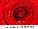 Stock photo red rose with dew drops close up natural texture 725805007