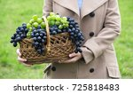 Girl Holding A Basket With...