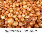 Many onion in different sizes in a market - stock photo