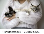 Stock photo pretty girl in the knitted pullover with cute cat on a white wall background knitting close up 725895223