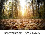 autumn road space  | Shutterstock . vector #725916607