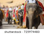 Decorated Elephants In Jaleb...