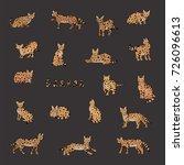 serval cat animal cartoon... | Shutterstock . vector #726096613