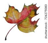 autumn maple leaf | Shutterstock . vector #726275083