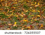 autumn . leaves on the ground... | Shutterstock . vector #726355537