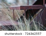 Small photo of Stairs of an abandoned house, overgrown with grass. The concept of desolation and abandonment.
