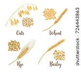wheat  barley  oat and rye.... | Shutterstock .eps vector #726443863