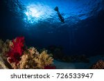 silhouettes of freedivers... | Shutterstock . vector #726533947