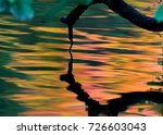 colorful abstract background ... | Shutterstock . vector #726603043