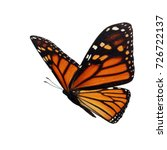 beautiful monarch butterfly... | Shutterstock . vector #726722137