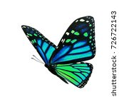 beautiful colorful monarch... | Shutterstock . vector #726722143
