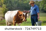 a farmer breeds and cows his... | Shutterstock . vector #726749713
