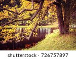 beautiful autumn park  pushkin. ... | Shutterstock . vector #726757897