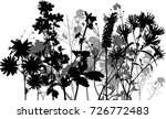 illustration with wild flowers... | Shutterstock .eps vector #726772483