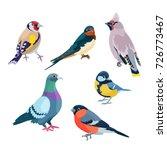 Six Sitting Birds  Goldfinch ...