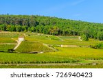 countryside with fields and... | Shutterstock . vector #726940423
