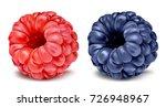 raspberry and blackberry....   Shutterstock .eps vector #726948967