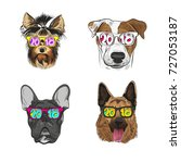 dog wearing sunglasses  year... | Shutterstock .eps vector #727053187