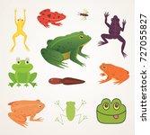 exotic amphibian set. frogs in...   Shutterstock .eps vector #727055827