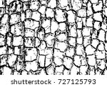 tree bark textures set isolated ... | Shutterstock .eps vector #727125793