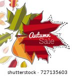 composition of striped leaves... | Shutterstock .eps vector #727135603