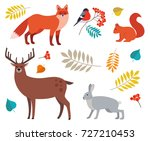 forest animals and plants set ... | Shutterstock .eps vector #727210453