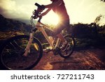 woman cyclist cycling on summer ... | Shutterstock . vector #727211743