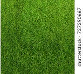 texture green grass. background ... | Shutterstock . vector #727290667