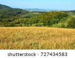 mountain meadow in autumn... | Shutterstock . vector #727434583