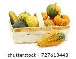 colorful decorative pumpkins...   Shutterstock . vector #727613443