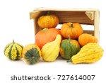 colorful decorative pumpkins in ... | Shutterstock . vector #727614007