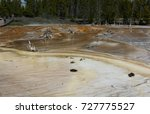 Small photo of As hot spring water slides across a flat area huge areas of baterica form large brown mats.