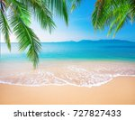 palm and tropical beach | Shutterstock . vector #727827433