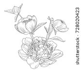 peony rose flowers bouquet... | Shutterstock .eps vector #728020423