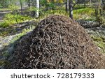 a large anthill in a sunny... | Shutterstock . vector #728179333