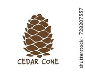 cedar cone  sketch for your... | Shutterstock .eps vector #728207557